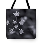 Baby Queen Anne's Lace Monochrome Tote Bag