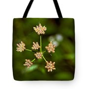 Baby Queen Anne's Lace Tote Bag