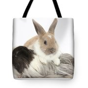 Baby Rabbit And Long-haired Guinea Pig Tote Bag