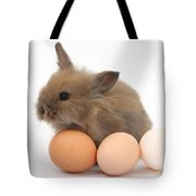 Baby Rabbit With Eggs Tote Bag