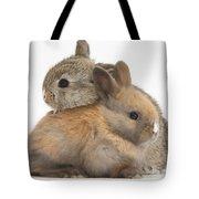 Baby Rabbits Tote Bag by Mark Taylor