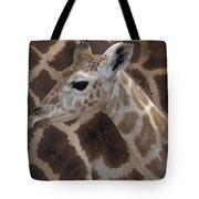 Baby Rothschild Giraffe  Tote Bag