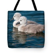 Baby Swans Tote Bag