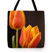 Baby Tulips Close Up Macro Tote Bag