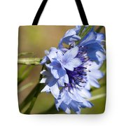 Bachelor Button Blowin In The Wind Tote Bag