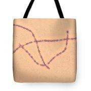 Bacillus Anthracis Tote Bag