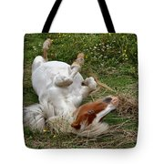 Back Scratching Tote Bag