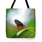 Backlit Butterfly Tote Bag