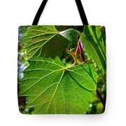 Backlit Leaves Tote Bag