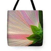 Backlit Mallow Tote Bag