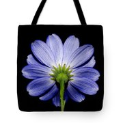 Backside Of A Blue Flower Tote Bag