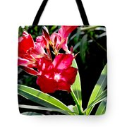 Backyard Red Beauty Tote Bag