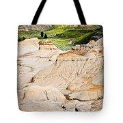 Badlands In Alberta Tote Bag by Elena Elisseeva