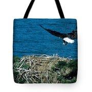 Bald Eagle And Chicks Tote Bag