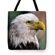 Bald Eagle Tote Bag