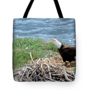 Bald Eagle Calling Tote Bag