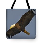 Bald Eagle Fly Over Tote Bag