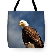 Bald Eagle Homer Alaska Tote Bag