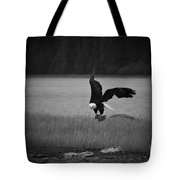 Bald Eagle Take Off Series 6 Of 8 Tote Bag
