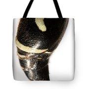 Bald-faced Hornet Stinger Tote Bag