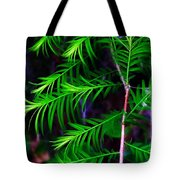 Baldcypress Tote Bag
