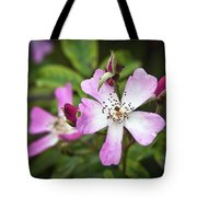 Ballerina Shrub Rose 3303 Tote Bag