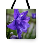 Balloon Flower Profile Tote Bag