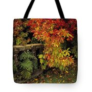 Balustrades & Autumn Colours Tote Bag by The Irish Image Collection