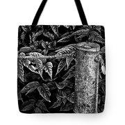 Bamboo Border Tote Bag