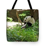 Bamboo Is Tasty Tote Bag