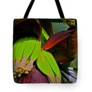 Banana Plant I Tote Bag