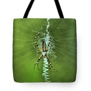 Banana Spider With Web Tote Bag