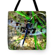 Banded Pennant Dragonfly Tote Bag