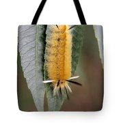 Banded Tussock Moth Caterpillar Tote Bag