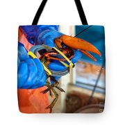 Banding An American Lobster In Chatham On Cape Cod Tote Bag