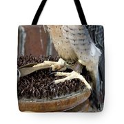 Barbary Falcon Feet Tote Bag