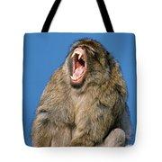 Barbary Macaque Macaca Sylvanus Yawning Tote Bag