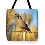 Barbed Wire Quail Tote Bag