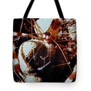Barbershop Shrimp Tote Bag