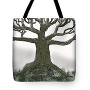 Bare Branches I Tote Bag