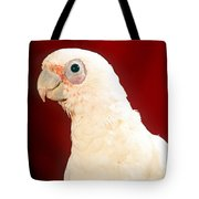 Bare Eyed Cockatoo Tote Bag