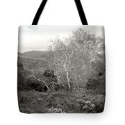 Bare Garden In The Hills Tote Bag