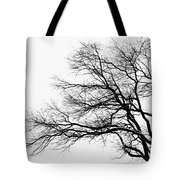 Bare Tree Silhouette Tote Bag