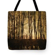 Fall Trees On A Lake Tote Bag