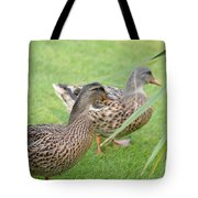 Barefoot Stroll In The Grass Tote Bag
