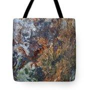 Bark Abstract Tote Bag