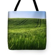 Barley, Co Down Tote Bag