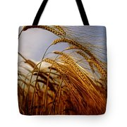 Barley, Co Meath, Ireland Tote Bag