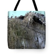 Barn From Below Tote Bag