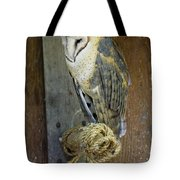 Barn Owl At Roost Tote Bag